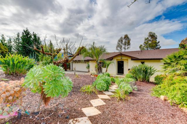 2433 Sunflower Ter, Vista, CA 92083 (#190015424) :: Coldwell Banker Residential Brokerage