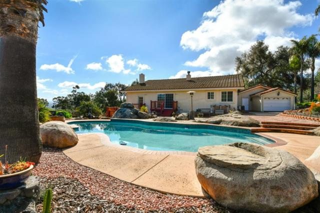 9856 Canyon Country Lane, Escondido, CA 92026 (#190015553) :: Pugh | Tomasi & Associates