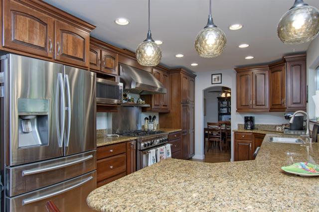741 Point Arguello, Oceanside, CA 92058 (#190015650) :: Neuman & Neuman Real Estate Inc.