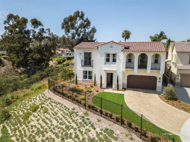 4700 Borden Ct, Carlsbad, CA 92010 (#190015690) :: Farland Realty