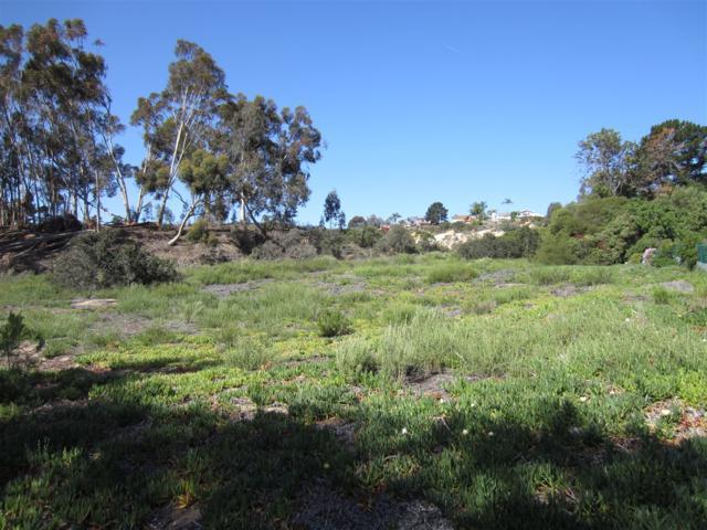 00 Ranch View Terrace #49, Encinitas, CA 92024 (#190016754) :: Neuman & Neuman Real Estate Inc.