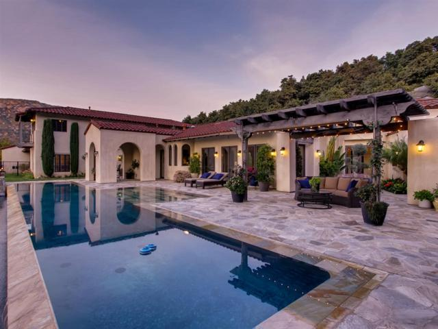 9201 Cedar Trails Ln, Valley Center, CA 92082 (#190016794) :: The Yarbrough Group