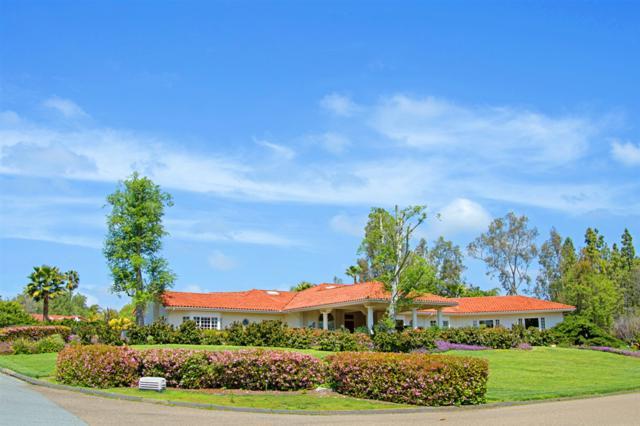 17328 Avenida Peregrina, Rancho Santa Fe, CA 92067 (#190017744) :: Coldwell Banker Residential Brokerage