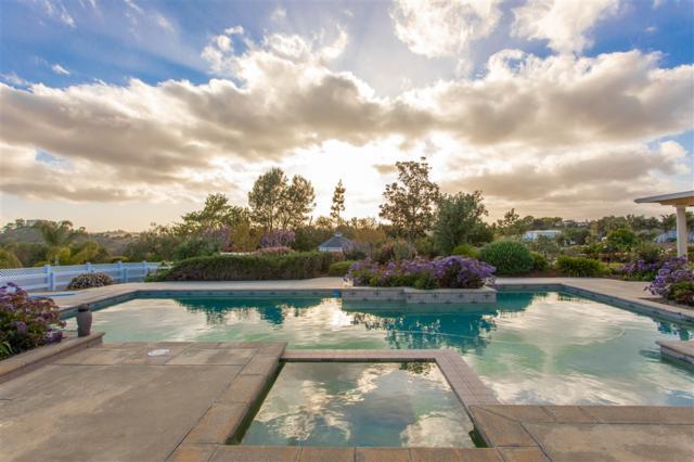 1323 Montecito Ln, Fallbrook, CA 92028 (#190019623) :: Farland Realty