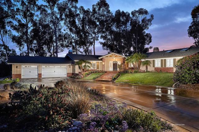 15166 Las Planideras, Rancho Santa Fe, CA 92067 (#190019691) :: Whissel Realty