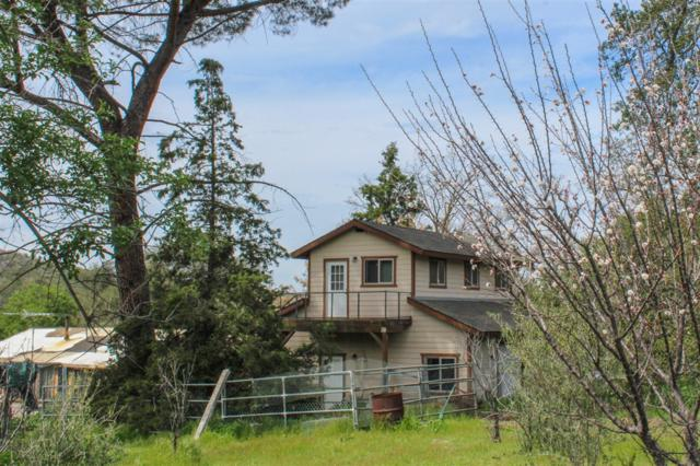 27160 Slaughterhouse Rd, Ramona, CA 92065 (#190019887) :: Keller Williams - Triolo Realty Group