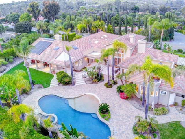 17350 Avenida Peregrina, Rancho Santa Fe, CA 92067 (#190020021) :: Coldwell Banker Residential Brokerage