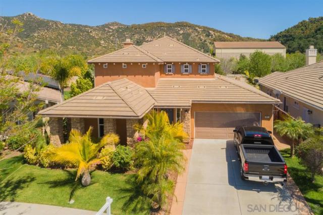 2891 Oro Blanco Circle, Escondido, CA 92027 (#190021251) :: Ascent Real Estate, Inc.