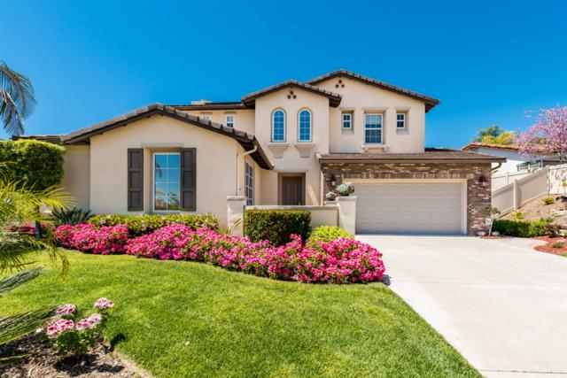 8045 Paseo Arrayan, Carlsbad, CA 92009 (#190021275) :: The Marelly Group | Compass