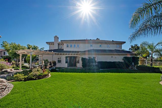 13062 Dressage Lane, San Diego, CA 92130 (#190021462) :: Coldwell Banker Residential Brokerage