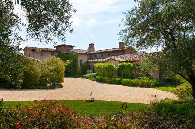 6410 Calle Ponte Bella, Rancho Santa Fe, CA 92091 (#190023070) :: Coldwell Banker Residential Brokerage