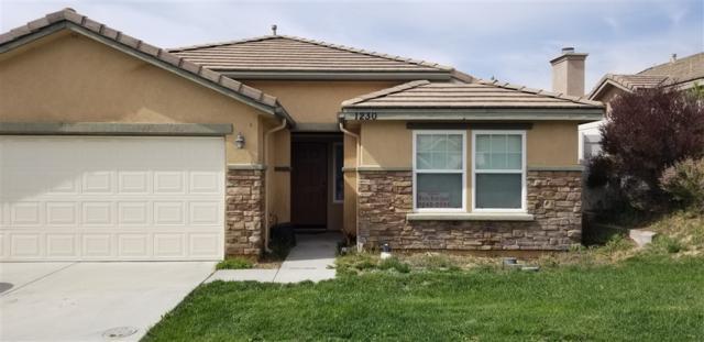 1230 Coast Oak Trl, Campo, CA 91906 (#190024742) :: Whissel Realty