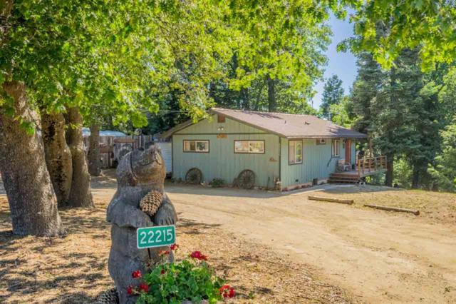 22215 Crestline Rd, Palomar Mountain, CA 92060 (#190025182) :: Neuman & Neuman Real Estate Inc.