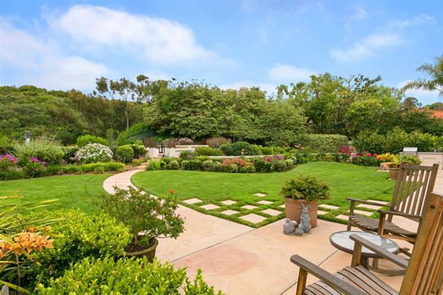 14209 Via Baroda, San Diego, CA 92130 (#190025970) :: Farland Realty