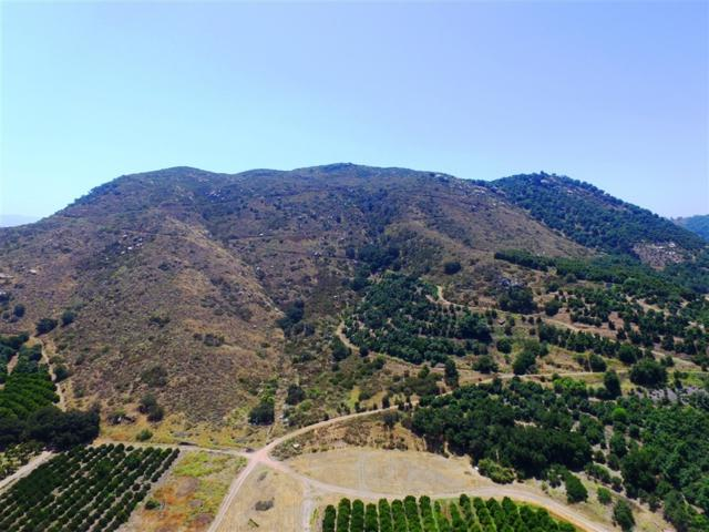 5200 Pala Rd A, Fallbrook, CA 92028 (#190026029) :: Neuman & Neuman Real Estate Inc.