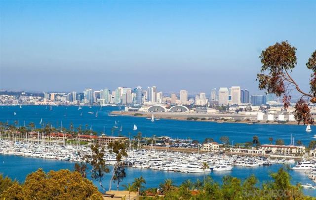 419 La Crescentia Dr, San Diego, CA 92106 (#190026062) :: Neuman & Neuman Real Estate Inc.