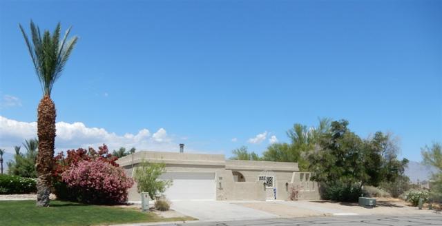 1170 Ace Way, Borrego Springs, CA 92004 (#190026106) :: Neuman & Neuman Real Estate Inc.
