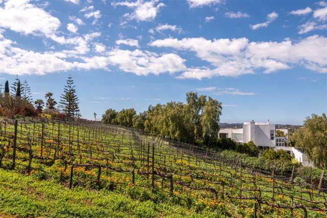 18486 Lago Vista, Rancho Santa Fe, CA 92067 (#190026392) :: The Yarbrough Group