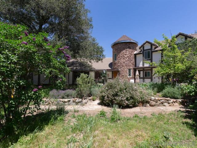 4756 Glenside Rd, Santa Ysabel, CA 92070 (#190026816) :: Ascent Real Estate, Inc.