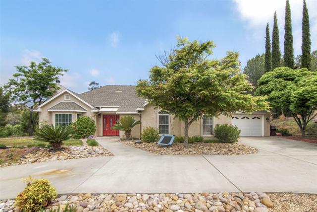 14942 Moonglow Drive, Ramona, CA 92065 (#190026896) :: Farland Realty