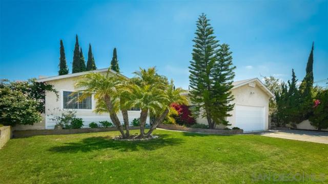8015 Michelle Dr, La Mesa, CA 91942 (#190026918) :: Cane Real Estate