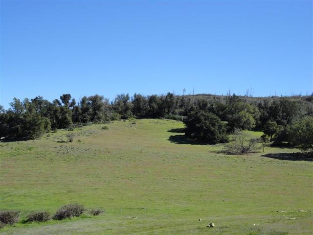 25240 Black Canyon Road 194-160-45-00,1, Santa Ysabel, CA 92070 (#190027407) :: Coldwell Banker Residential Brokerage