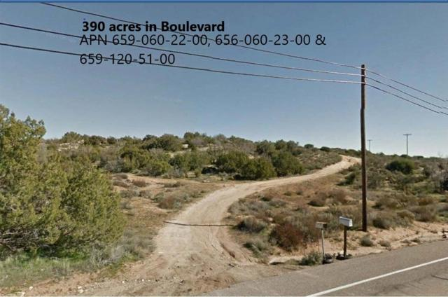 390 acres Old Hwy 80 #22, Jacumba, CA 91934 (#190027645) :: Farland Realty