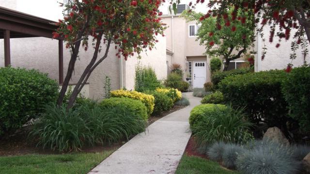 23913 Green Haven Lane, Ramona, CA 92065 (#190027658) :: Farland Realty