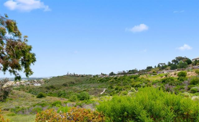 1350 Panorama Ridge Rd., Oceanside, CA 92056 (#190027841) :: Whissel Realty