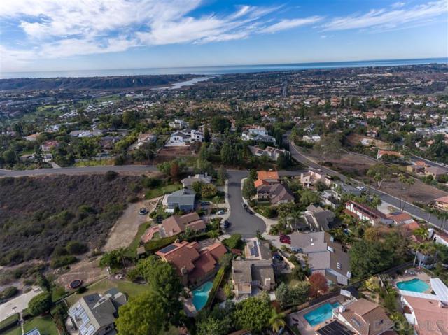 2732 Obelisco Ct, Carlsbad, CA 92009 (#190027973) :: Ascent Real Estate, Inc.
