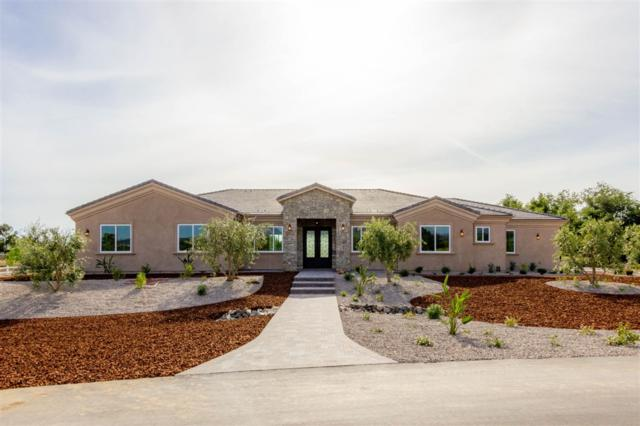 28428 Almona Way, Valley Center, CA 92082 (#190028151) :: Neuman & Neuman Real Estate Inc.