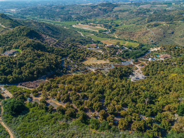 30201 Luis Rey Heights 127-512-26-00, Bonsall, CA 92003 (#190028206) :: Neuman & Neuman Real Estate Inc.