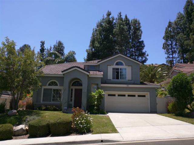 14016 Chestnut Hill Ln, San Diego, CA 92128 (#190028784) :: Be True Real Estate
