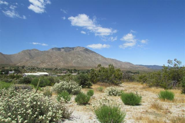 7160 Buckboard Trail -, Julian, CA 92036 (#190030302) :: Neuman & Neuman Real Estate Inc.