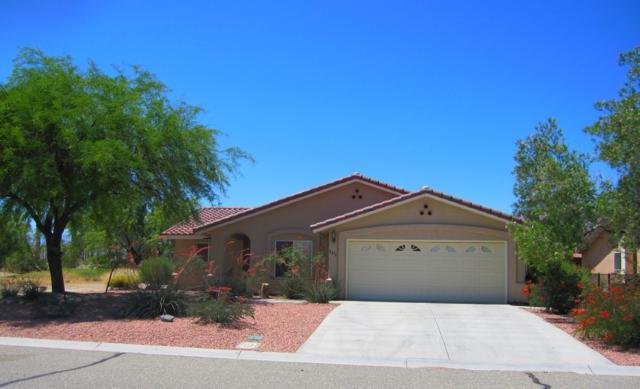 2876 Back Nine, Borrego Springs, CA 92004 (#190030384) :: Coldwell Banker Residential Brokerage