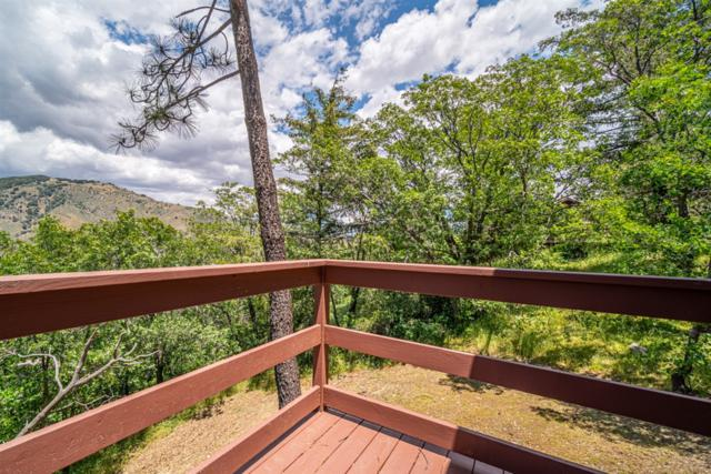 1236 Volcan View Dr., Julian, CA 92036 (#190030757) :: Whissel Realty