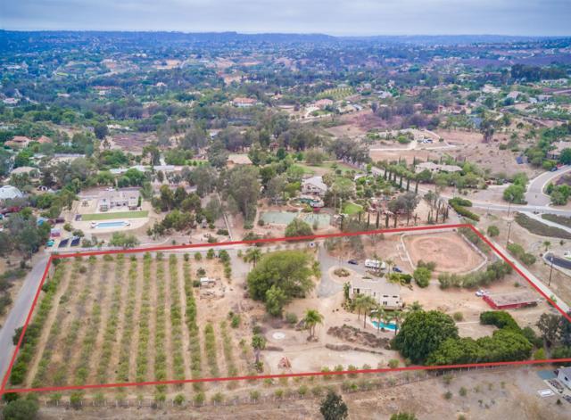 3615 Fortuna Ranch Rd, Encinitas, CA 92024 (#190030792) :: Coldwell Banker Residential Brokerage