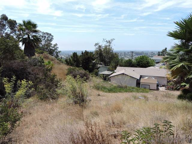 Lava Ct #0, La Mesa, CA 91941 (#190030859) :: Neuman & Neuman Real Estate Inc.
