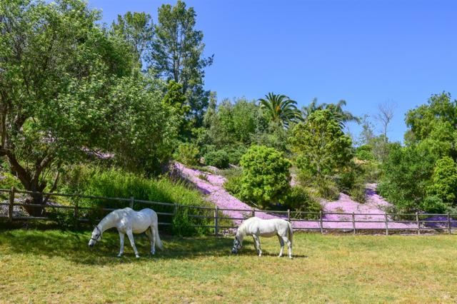 5330 San Elijo #26, Rancho Santa Fe, CA 92067 (#190030890) :: Neuman & Neuman Real Estate Inc.