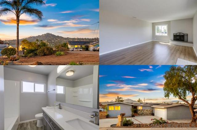 3338 S Bonita St, Spring Valley, CA 91977 (#190031069) :: Neuman & Neuman Real Estate Inc.