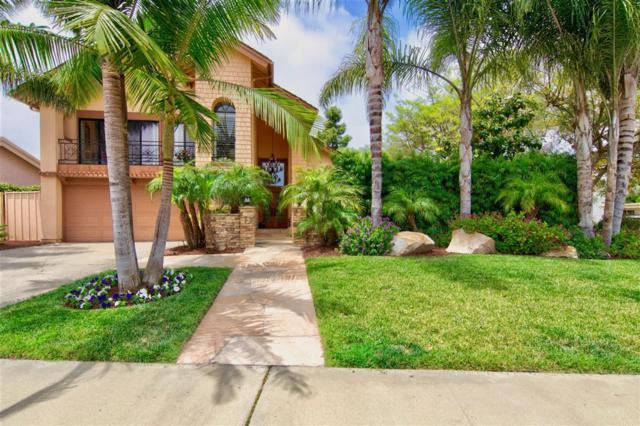 3942 Avenida Brisa, Rancho Santa Fe, CA 92091 (#190031078) :: Coldwell Banker Residential Brokerage