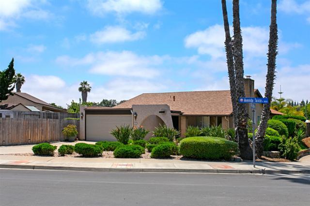 862 Avenida Taxco, Vista, CA 92084 (#190031428) :: Coldwell Banker Residential Brokerage