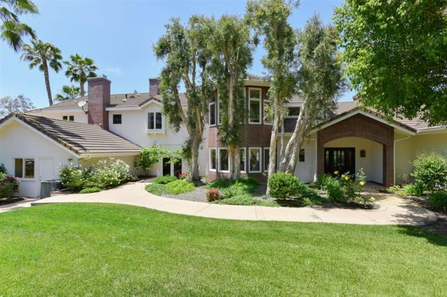 6842 Circo Diegueno Court, Rancho Santa Fe, CA 92067 (#190031495) :: Neuman & Neuman Real Estate Inc.