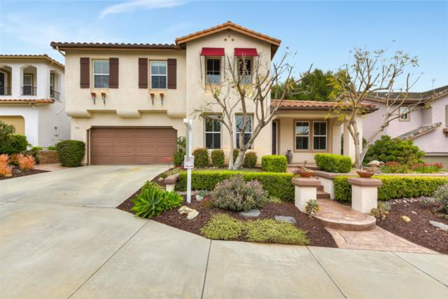 1581 Archer Rd, San Marcos, CA 92078 (#190032192) :: Coldwell Banker Residential Brokerage