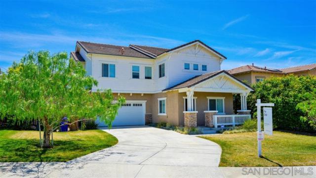 31163 Chesapeake Ln, Mentone, CA 92359 (#190032511) :: Neuman & Neuman Real Estate Inc.