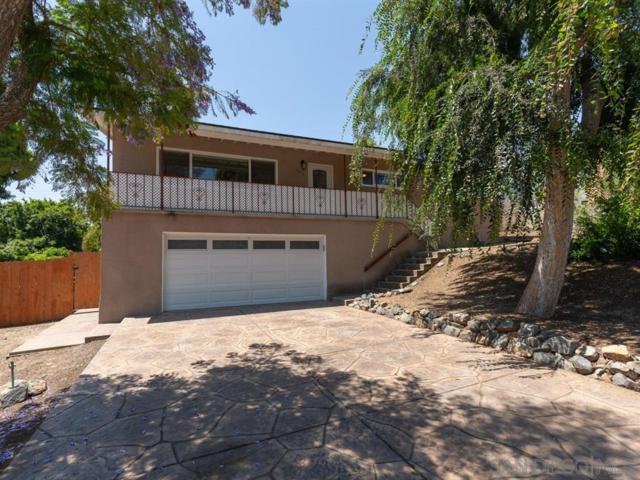 10417 Don Pico Rd, Spring Valley, CA 91978 (#190032582) :: Neuman & Neuman Real Estate Inc.