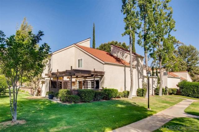 23958 Green Haven Lane, Ramona, CA 92065 (#190032613) :: Neuman & Neuman Real Estate Inc.
