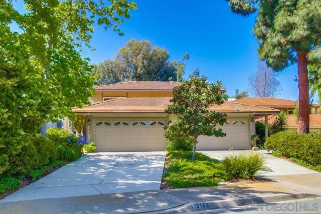 3153 Via De Caballo, Encinitas, CA 92024 (#190032769) :: Neuman & Neuman Real Estate Inc.