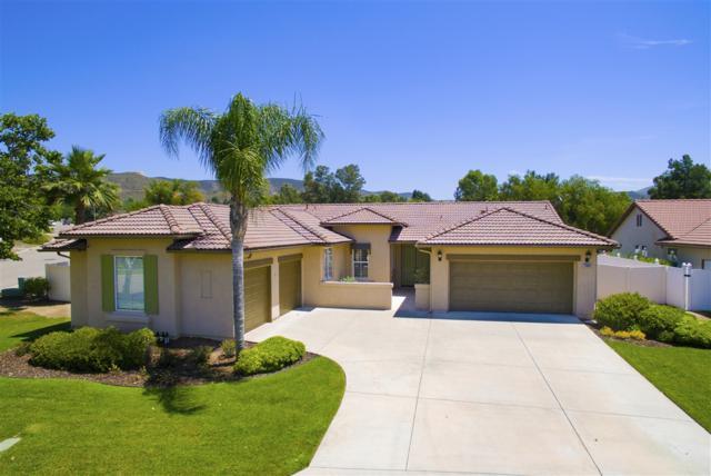 23606 Isla Del Rey, Ramona, CA 92065 (#190032862) :: Neuman & Neuman Real Estate Inc.
