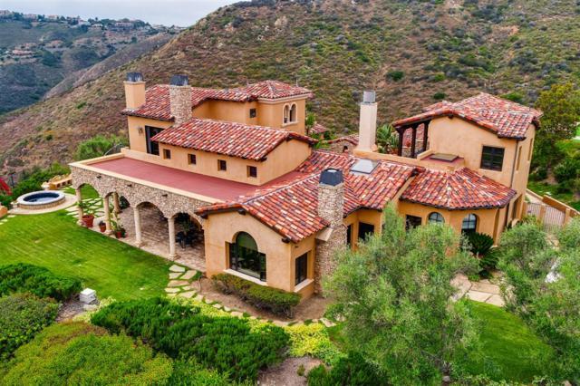 18113 El Brazo, Rancho Santa Fe, CA 92067 (#190032938) :: Coldwell Banker Residential Brokerage